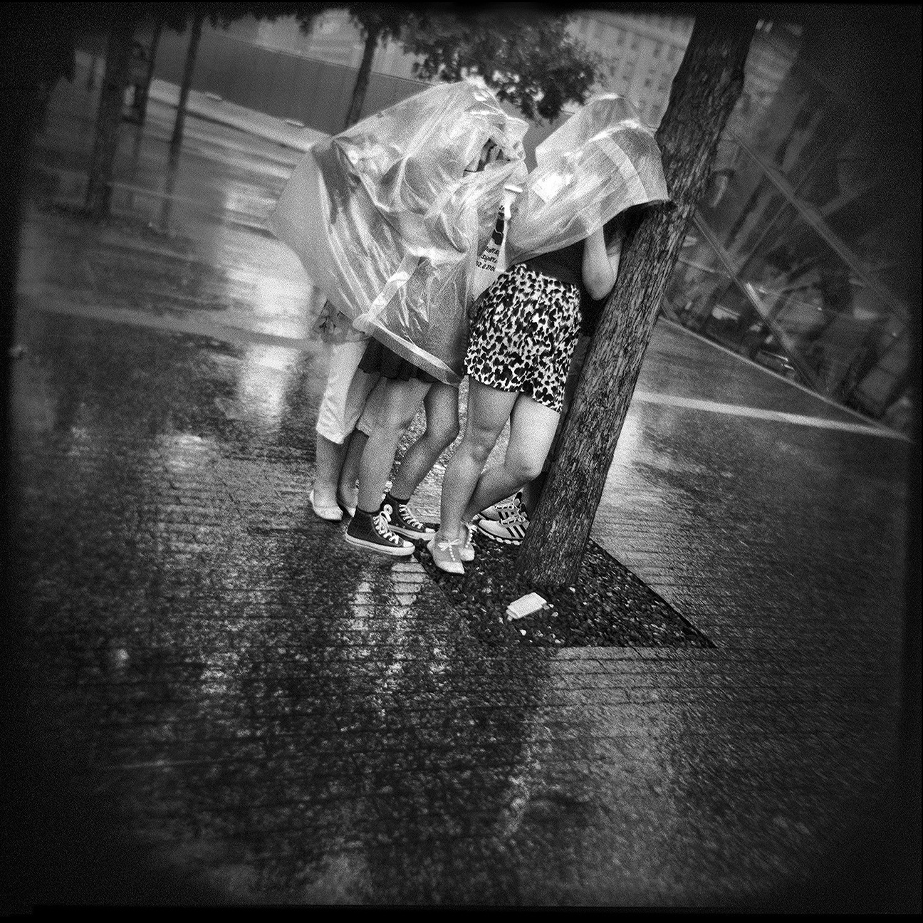 02-NYC-HOLGA-QD-Oct2014-FACEBOOK