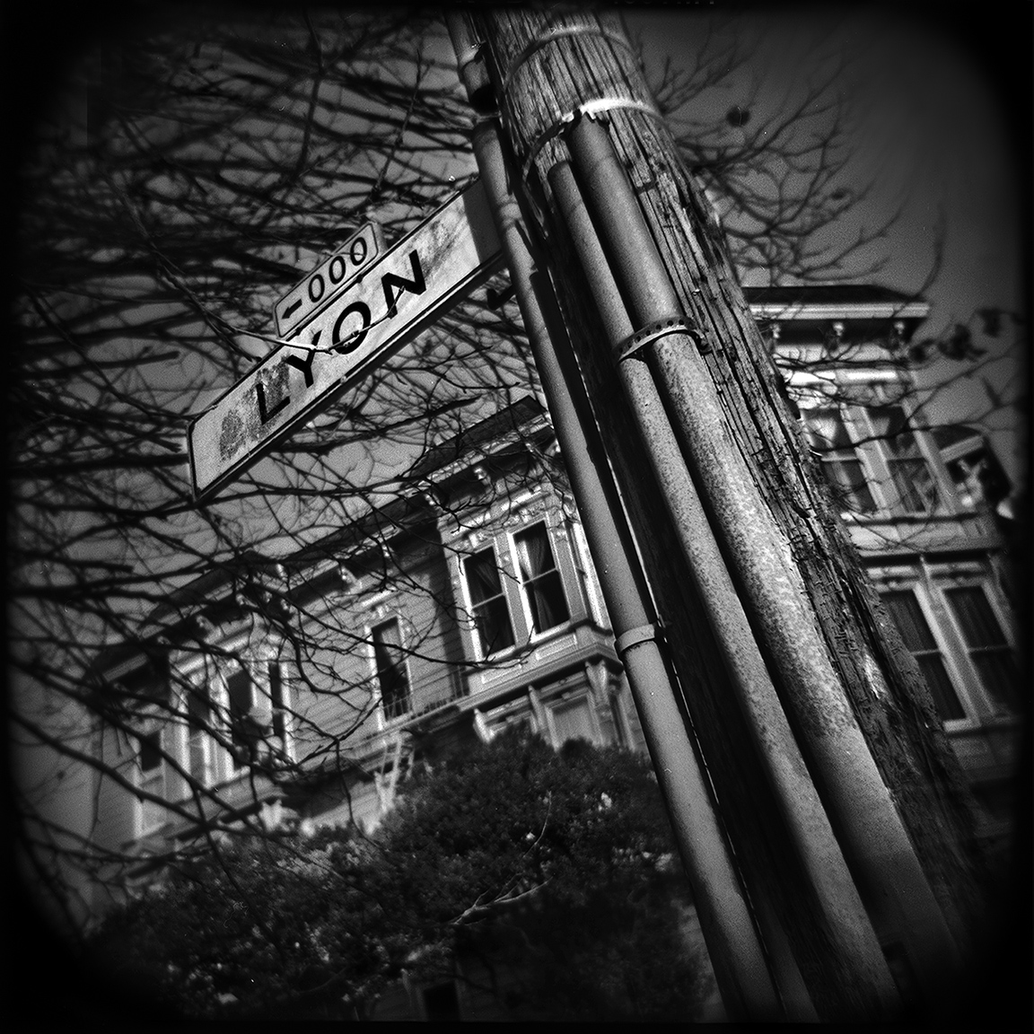 03-SF-HOLGA-WEBSITE-060314