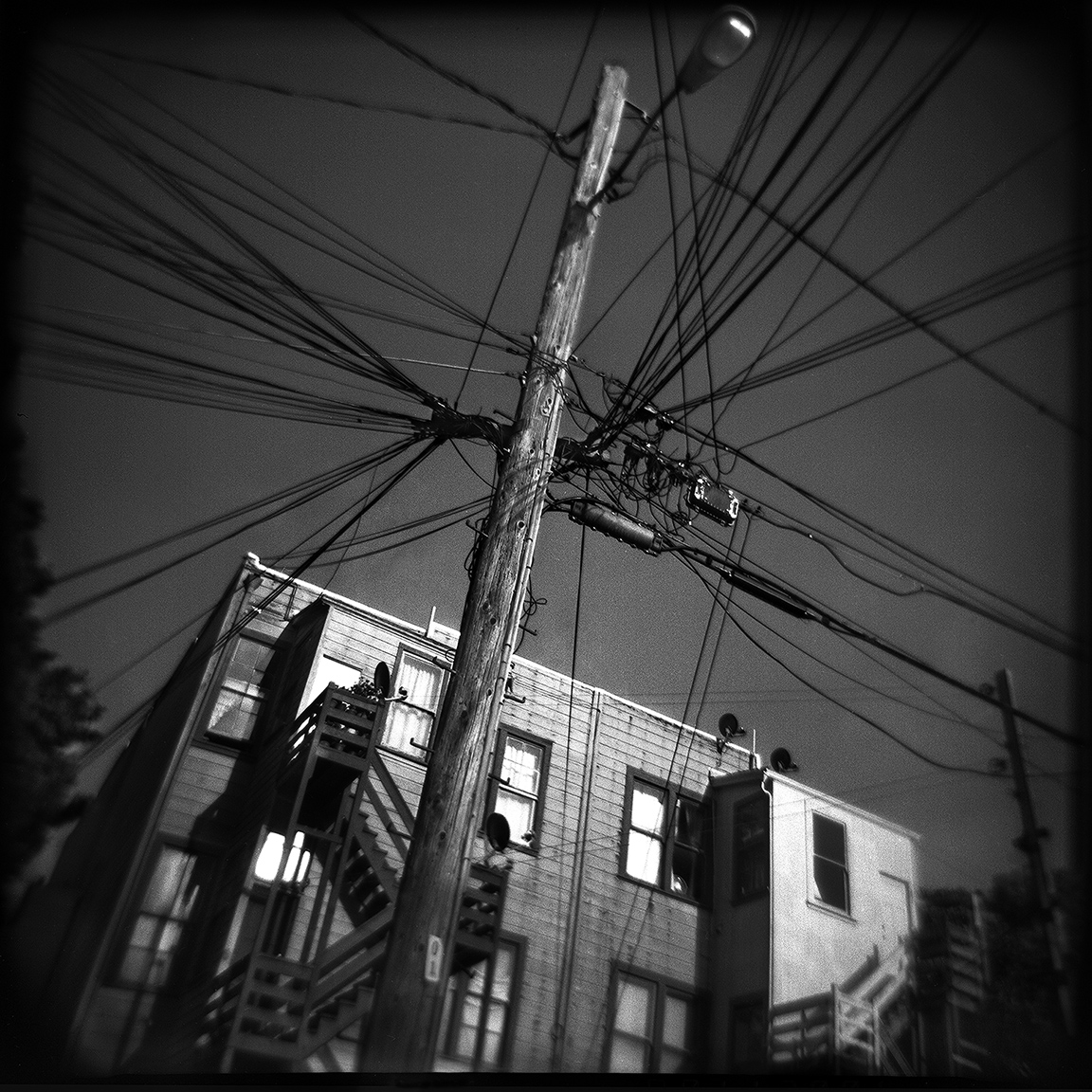 11-SF-HOLGA-WEBSITE-060314