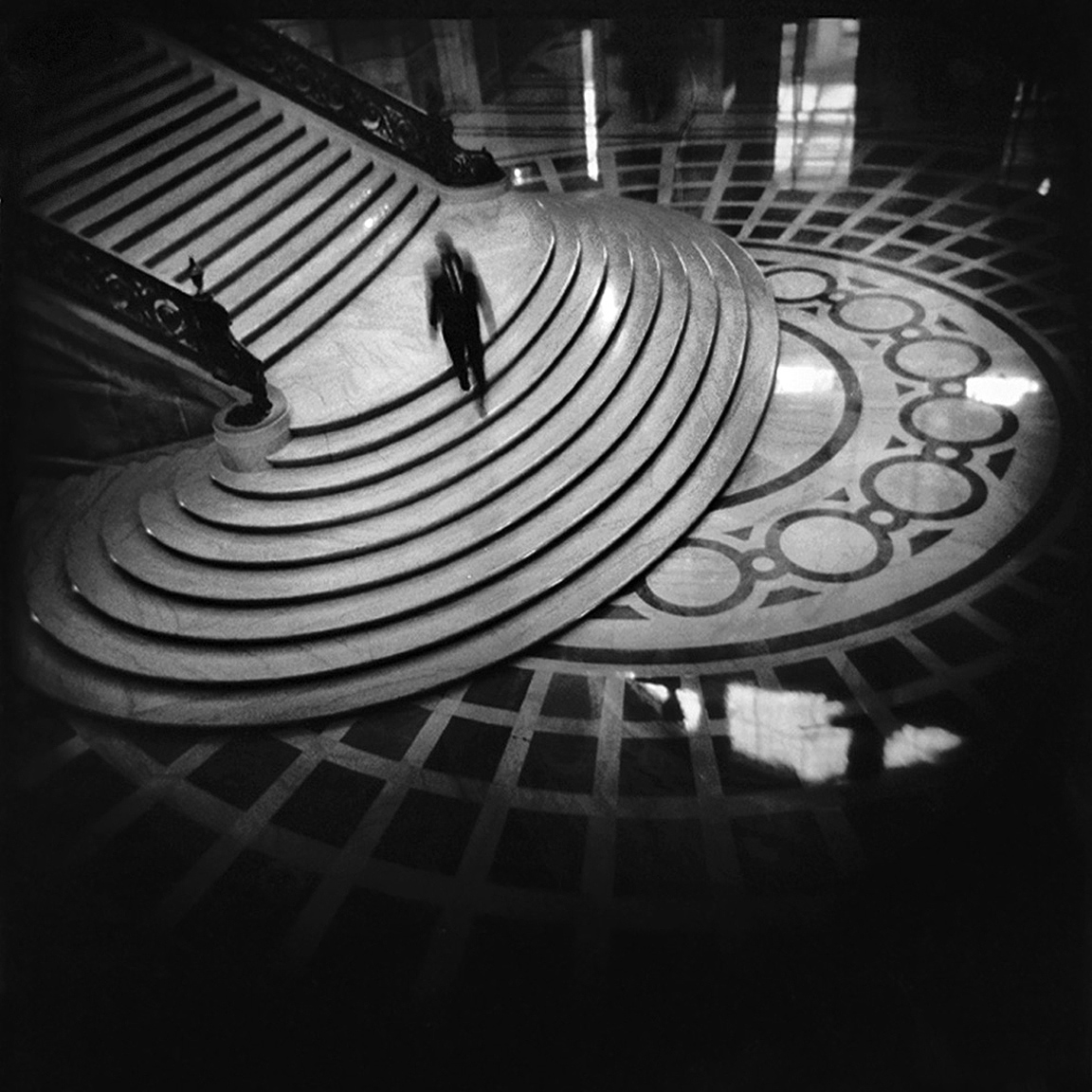 13-SF-HOLGA-WEBSITE-060314