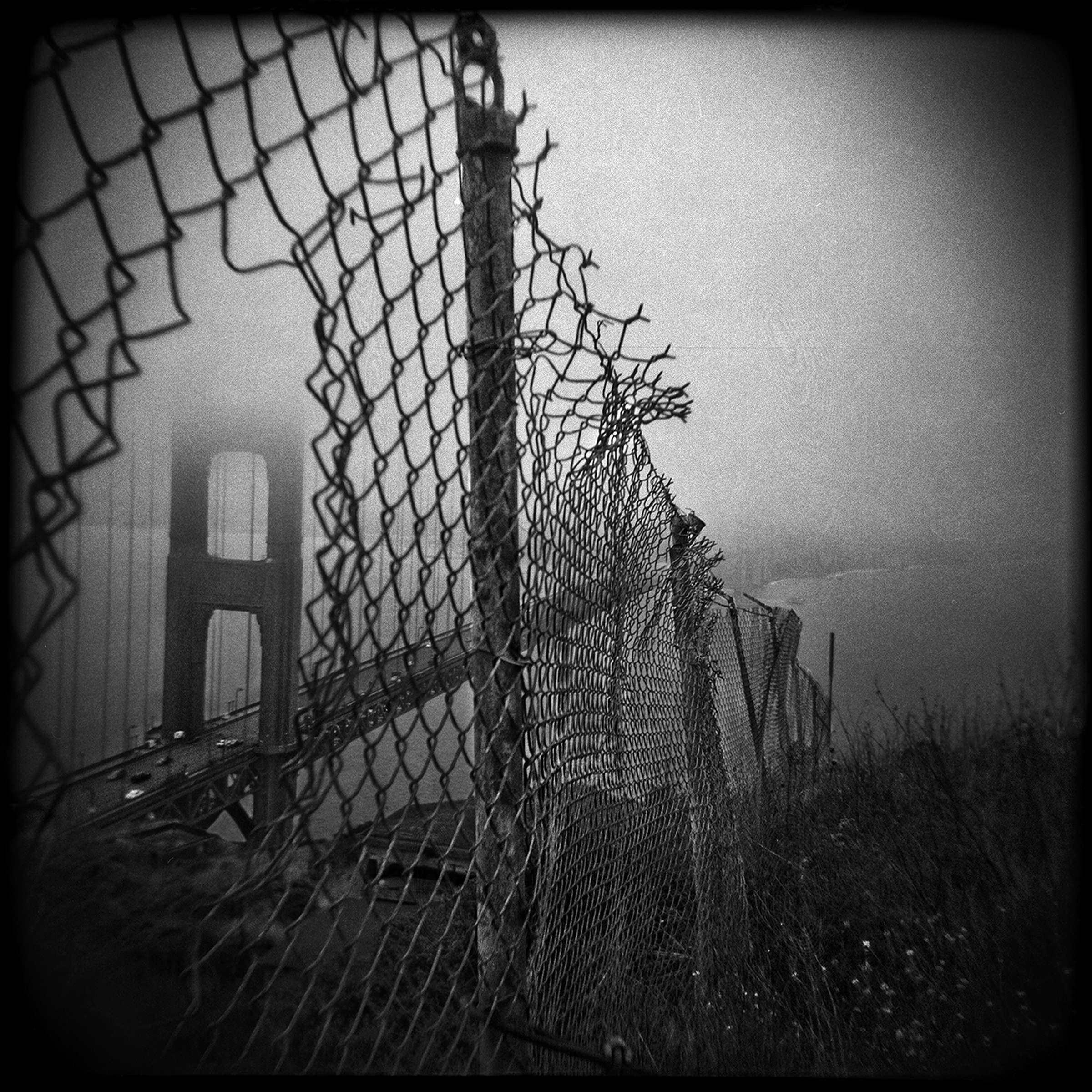 18-SF-HOLGA-WEBSITE-060314