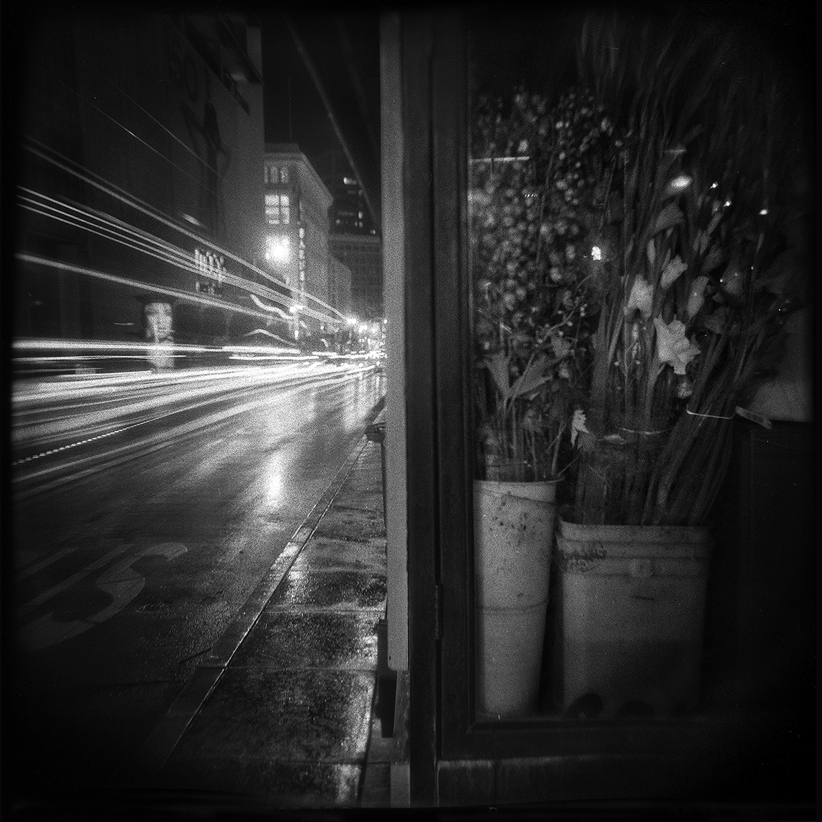 20-SF-HOLGA-WEBSITE-060314