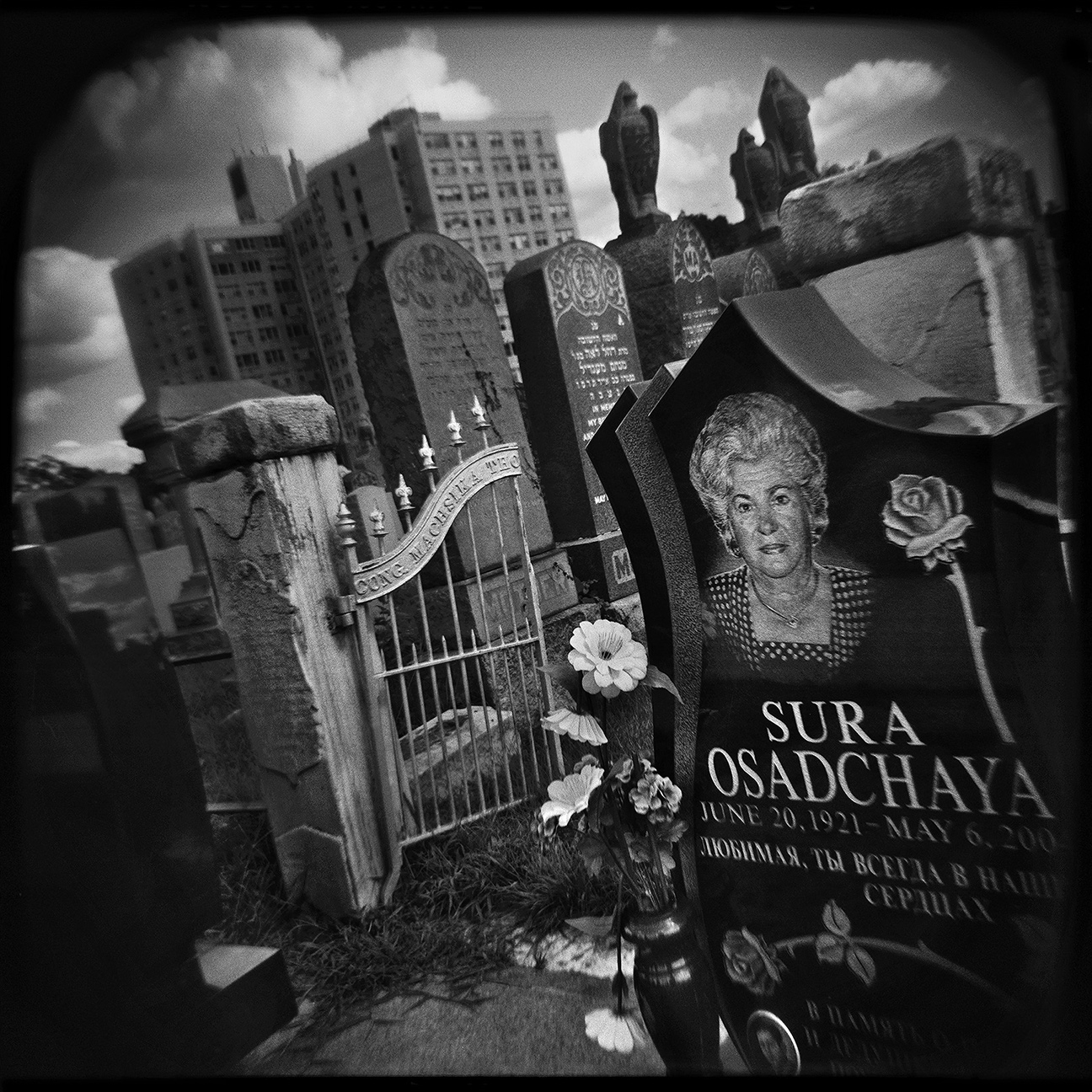 24-NYC-HOLGA-QD-Oct2014-FACEBOOK