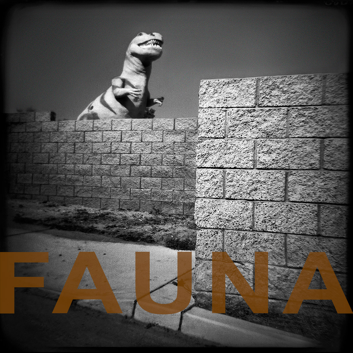 Fromthe series, FAUNA
