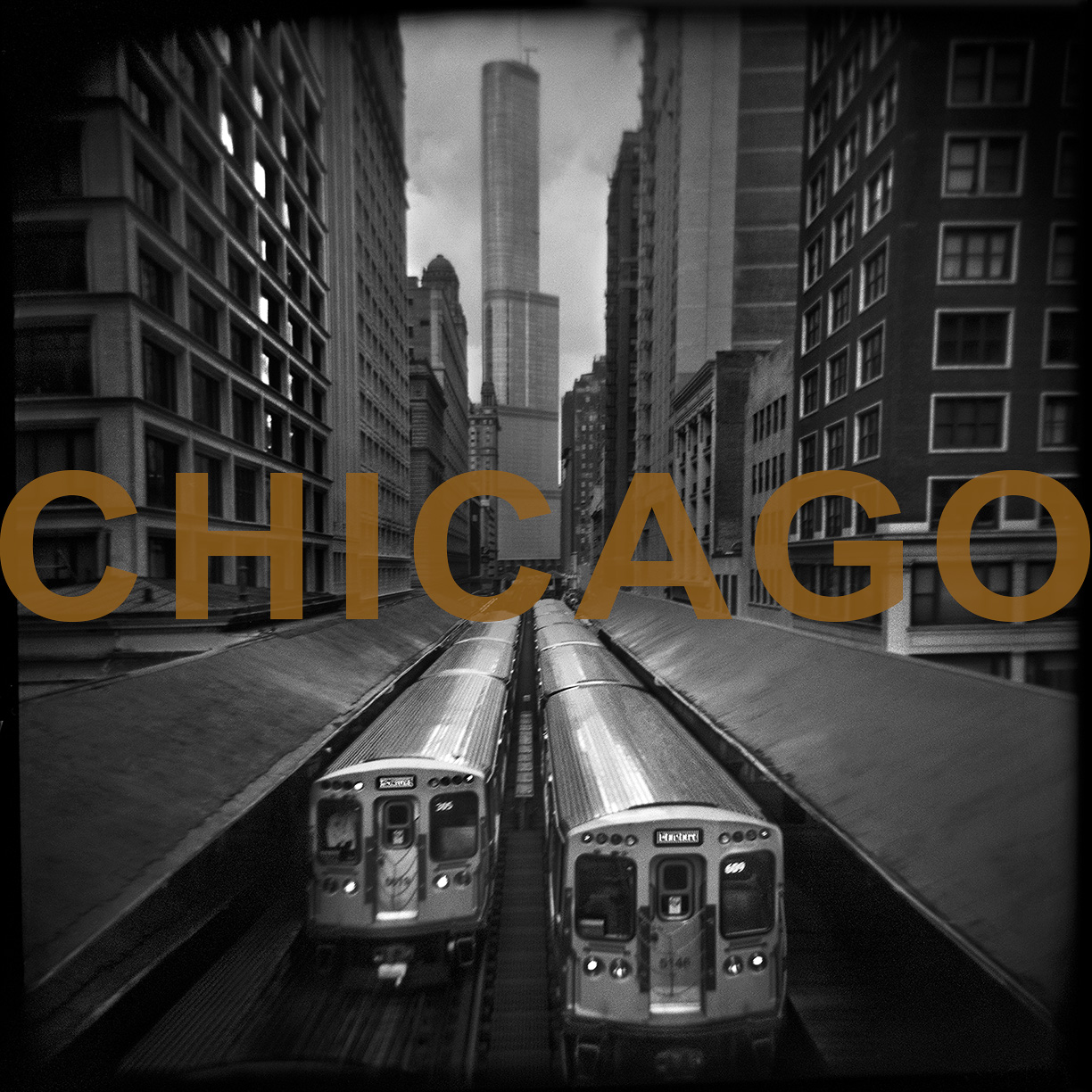 WEBSITE-NewPanel-CHICAGO-D